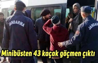 Minibüsten 43 kaçak göçmen çıktı