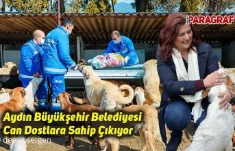 Aydın Büyükşehir Belediyesi Can Dostlara Sahip Çıkıyor