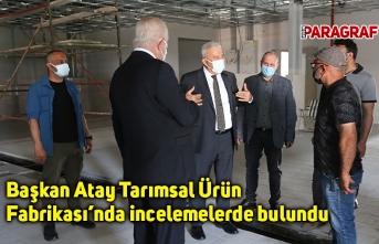 Başkan Atay Tarımsal Ürün Fabrikası'nda incelemelerde bulundu