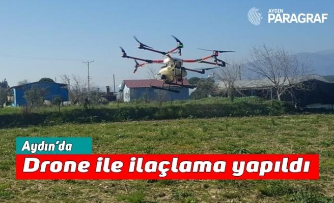 Aydın'da drone ile ilaçlama yapıldı