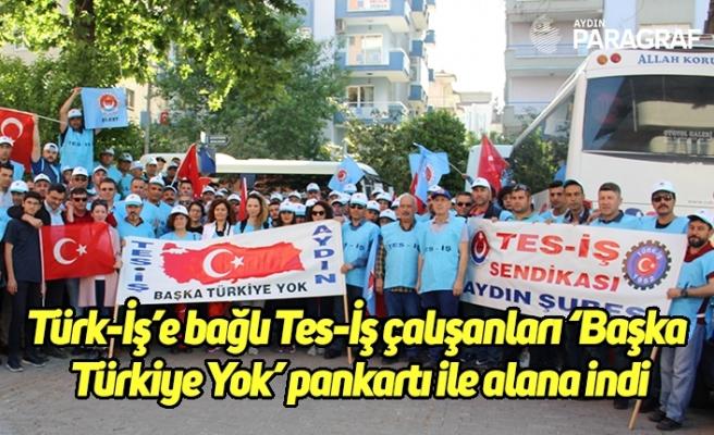 Türk-İş'e bağlı Tes-İş çalışanları 'Başka Türkiye Yok' pankartı ile alana indi