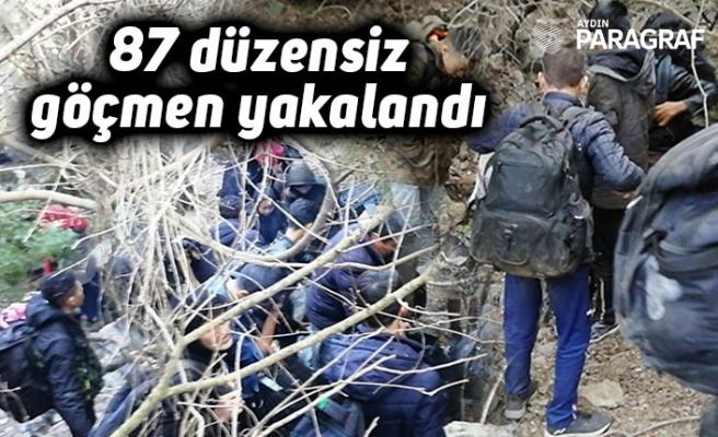 87 düzensiz göçmen yakalandı