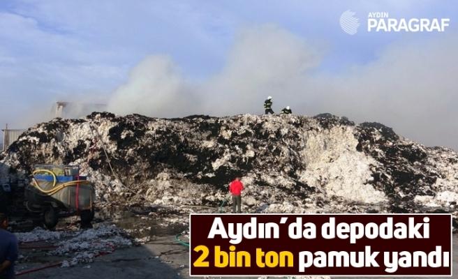 Aydın'da depodaki 2 bin ton pamuk yandı