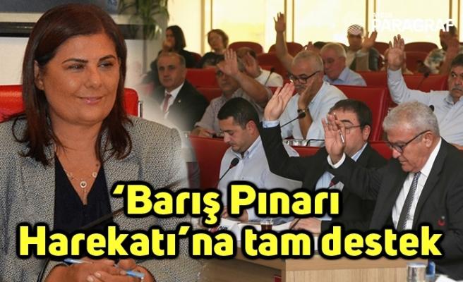 'Barış Pınarı Harekatı'na tam destek