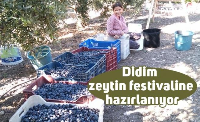 Didim zeytin festivaline hazırlanıyor
