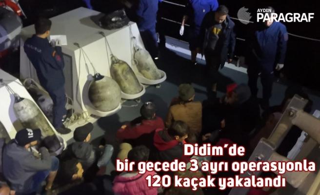 Didim'de bir gecede 3 ayrı operasyonla 120 kaçak yakalandı