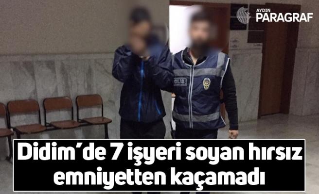 Didim'de 7 işyeri soyan hırsız emniyetten kaçamadı
