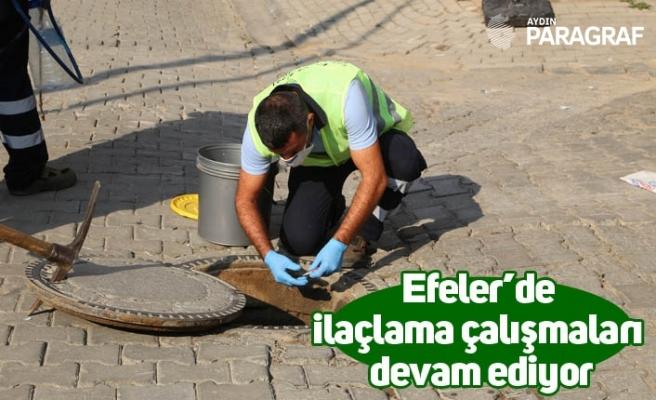 Efeler'de ilaçlama çalışmaları devam ediyor