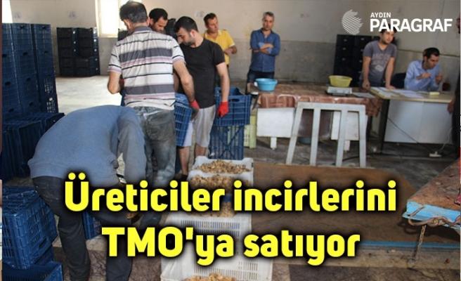Üreticiler incirlerini TMO'ya satıyor