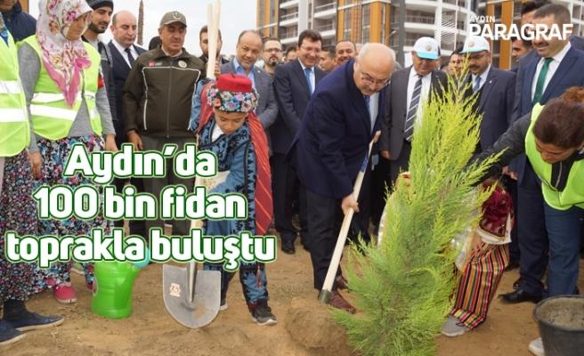 Aydın'da 100 bin fidan toprakla buluştu