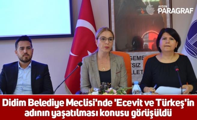 Didim Belediye Meclisi'nde 'Ecevit ve Türkeş'in adının yaşatılması konusu görüşüldü