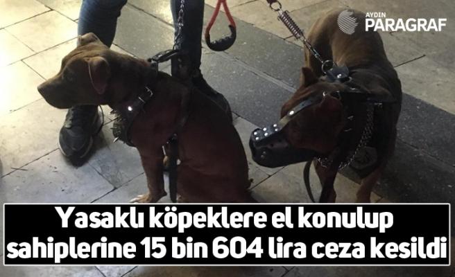 Yasaklı köpeklere el konulup sahiplerine 15 bin 604 lira ceza kesildi