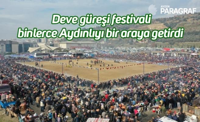 Deve güreşi festivali binlerce Aydınlıyı bir araya getirdi