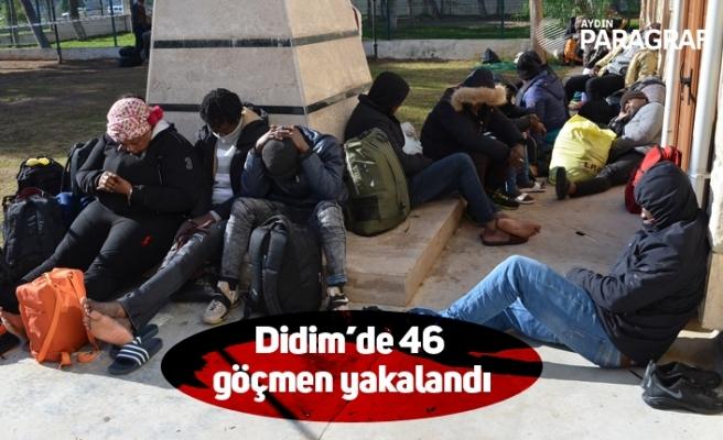 Didim'de 46 göçmen yakalandı