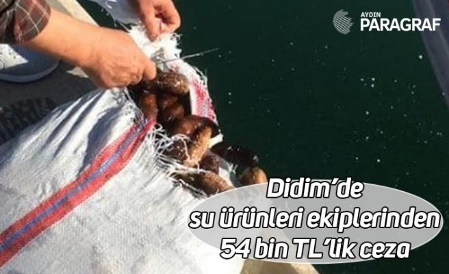 Didim'de su ürünleri ekiplerinden 54 bin TL'lik ceza