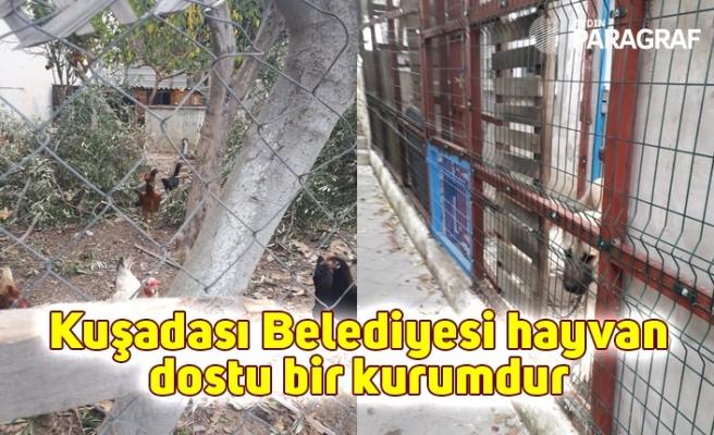 Kuşadası Belediyesi hayvan dostu bir kurumdur
