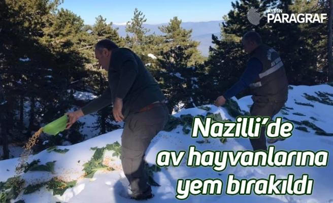 Nazilli'de av hayvanlarına yem bırakıldı