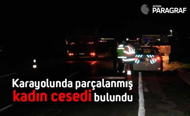 Karayolunda parçalanmış kadın cesedi bulundu