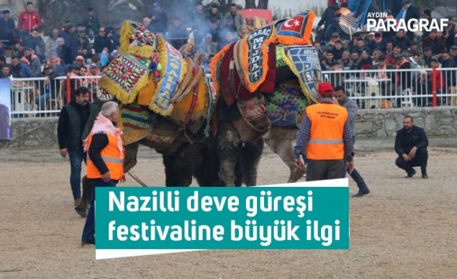 Nazilli deve güreşi festivaline büyük ilgi