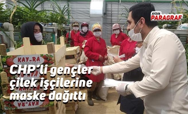 CHP Gençlik Kolları çilek işçilerine maske dağıttı