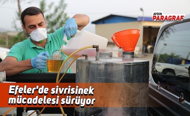 Efeler'de sivrisinek mücadelesi sürüyor