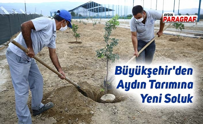 Büyükşehir'den Aydın Tarımına Yeni Soluk