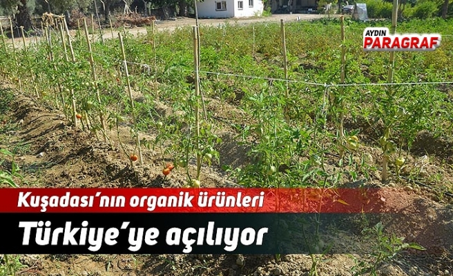 Kuşadası'nın organik ürünleri Türkiye'ye açılıyor
