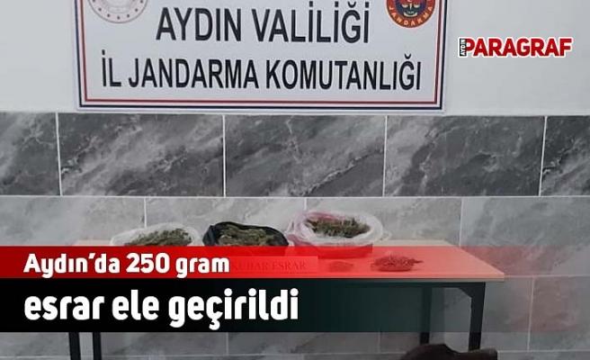 Aydın'da 250 gram esrar ele geçirildi