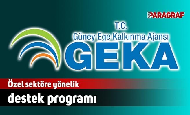 GEKA'dan, özel sektöre yönelik destek programı