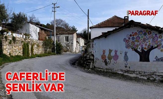 CAFERLİ'DE ŞENLİK VAR
