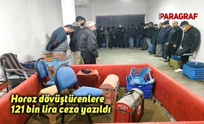 Horoz dövüştürenlere 121 bin lira ceza yazıldı