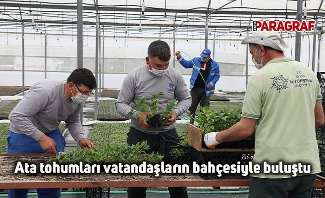 Ata tohumları vatandaşların bahçesiyle buluştu