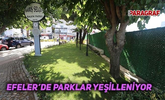Efeler'de parklar yeşilleniyor