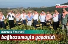 Kavacık Festivali bağbozumuyla yaşatıldı