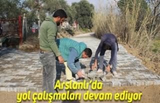 Arslanlı'da yol çalışmaları devam ediyor