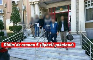 Didim'de aranan 5 şüpheli yakalandı