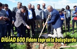 DİGİAD 600 fidanı toprakla buluşturdu