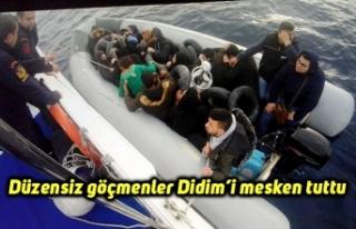 Düzensiz göçmenler Didim'i mesken tuttu