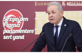Sezgin'den Fransız parlamentere sert yanıt