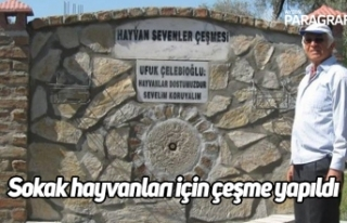Sokak hayvanları için çeşme yapıldı