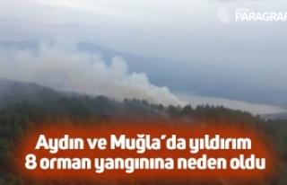 Aydın ve Muğla'da yıldırım 8 orman yangınına...