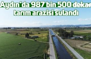 Aydın'da 987 bin 500 dekar tarım arazisi sulandı