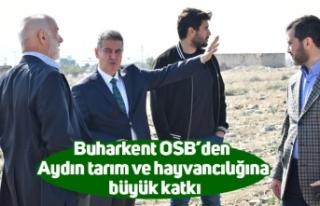 Buharkent OSB'den Aydın tarım ve hayvancılığına...