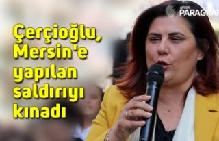 Çerçioğlu, Mersin'e yapılan saldırıyı...