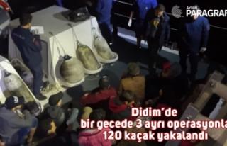 Didim'de bir gecede 3 ayrı operasyonla 120 kaçak...