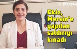 Ekiz, Mersin'e yapılan saldırıyı kınadı