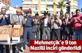 Mehmetçik'e 9 ton Nazilli inciri gönderildi