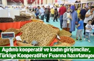 Aydınlı kooperatif ve kadın girişimciler, Türkiye...