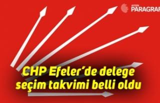 CHP Efeler'de delege seçim takvimi belli oldu