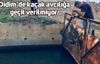 Didim'de kaçak avcılığa geçit verilmiyor